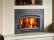 Fireplace Insert Gallery
